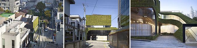 arquitectura verde - ann demeulemeester shop