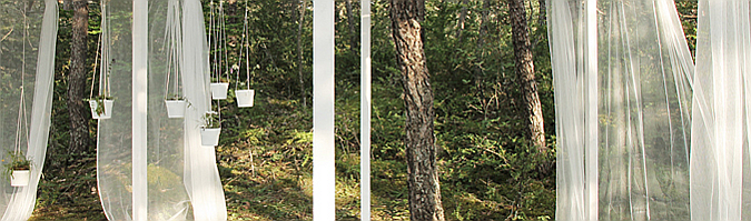 Desde mi árbol, pabellón de verano 05