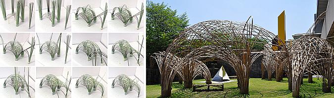 zoo de bambú -