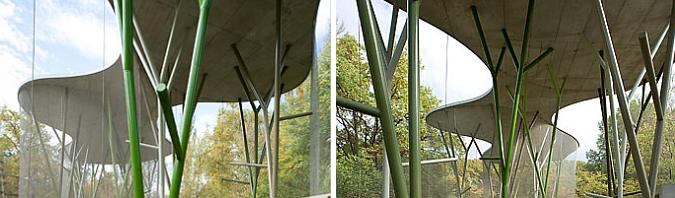casa para pájaros - aviary