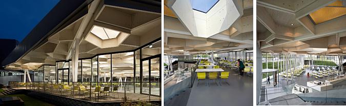 constelación de polígonos  - campus restaurant and event space