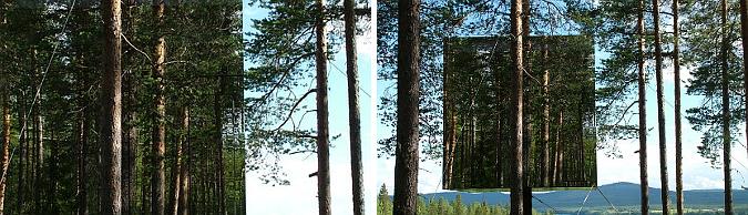el bosque reflejado - mirrorcube hotel room