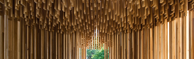 líneas rectas, formas curvas - sclera, temporary pavilion