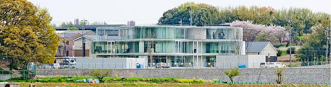 la arquitectura de las amebas - toyota aizuma hall